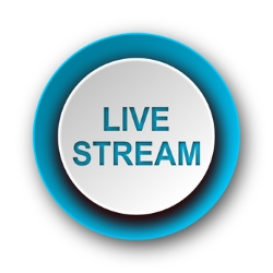 Die Streaming-Portale bieten die Streams live oder On-Demand an.