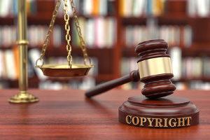 Über die Urheberrechtsverletzung der AfD hat das Amtsgericht in München entschieden.